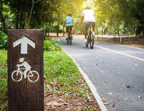 Mountain bike/Cycling