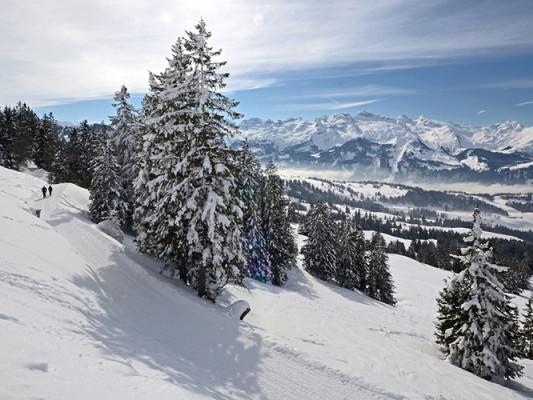 Winter Magic at 4* Sihlpark Hotel - Spüren Sie den Neuschnee unter Ihren Füssen und lassen Sie Schritt für Schritt den Alltag hinter