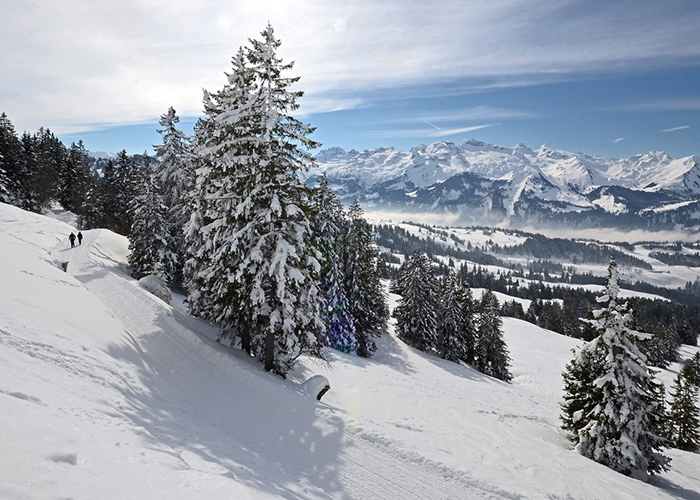 Winter Magic at 4* Sihlpark Hotel - Feel the fresh snow under your feet and leave everyday life behind step by step! With our winter spe