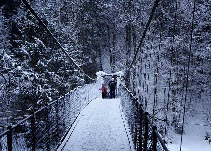 Hôtels dans la région du lac Léman - Randonnée hivernale en raquettes  Si vous êtes à la recherche d'une randonnée hivernale, nous