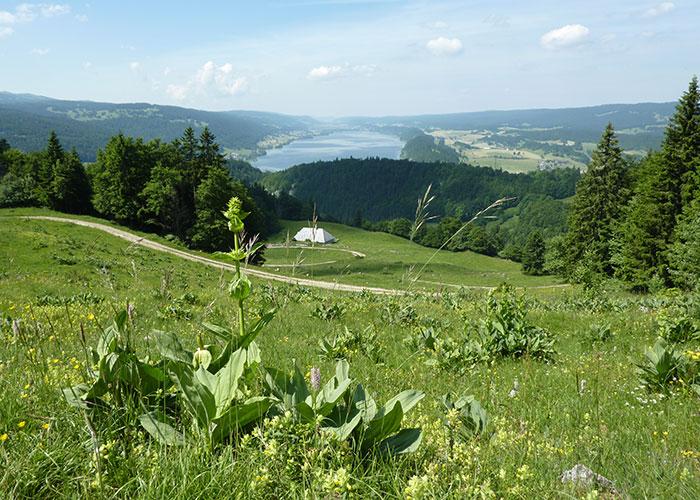 Hôtels dans la région du lac Léman - Le Parc naturel régional Jura vaudois  A l'extrémité nord-ouest du lac Léman, le parc naturel