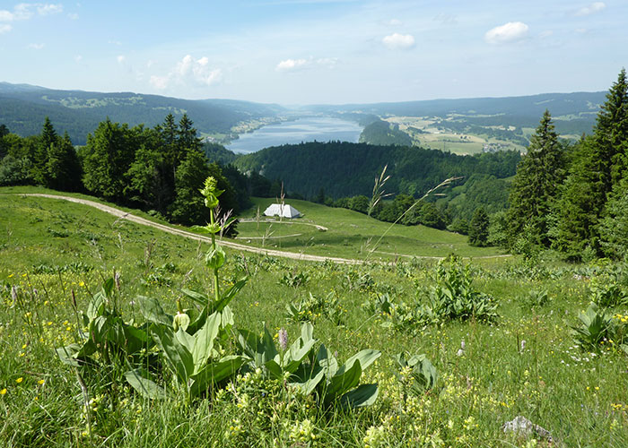 Region Genfersee - Jura Vaudois Nature Park  At the north-western end of Lake Geneva, the Jura Vaudois Nature Park exte
