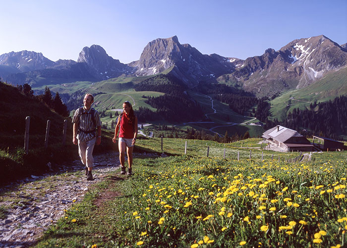 Bern Region - Gantrisch Nature Park  The Gantrisch Nature Park lies in the middle of the triangle between the citi