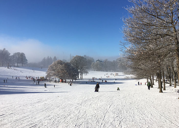 Hotels in Bern Region - Sledding on the Gurten  The Gurten is well known to many because of the open air that takes place th